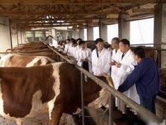 智能畜牧养殖业传感器应用方案